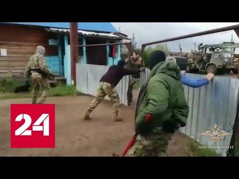 В Приангарье ФСБ и МВД задержали банду черных лесорубов - Россия 24