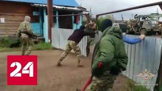 Смотреть видео В Приангарье ФСБ и МВД задержали банду черных лесорубов - Россия 24 онлайн