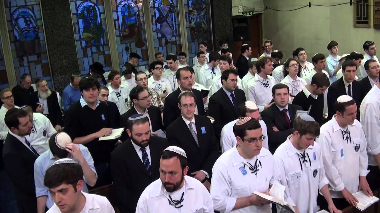 Download Maariv and Hallel with Jonny Turgel   Bnei Akiva Yom Hazikaron and Yom Ha'atzmaut 2012