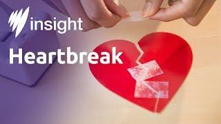 Insight S2015 Ep32 - Heartbreak