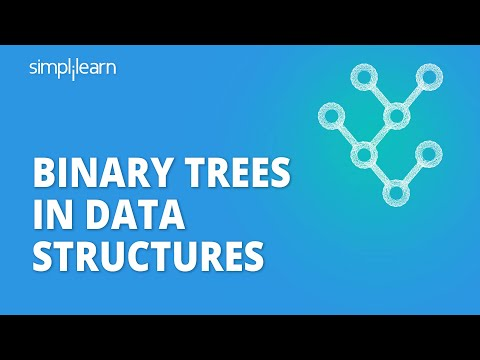 A Complete Guide to Implement Binary Tree in Data Structure