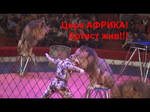 Цирк АФРИКА 2019.
