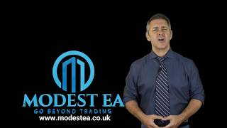 Modest EA Best Forex Robot