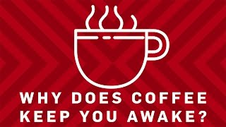 Why Does Coffee Keep You Awake? - Brit Lab