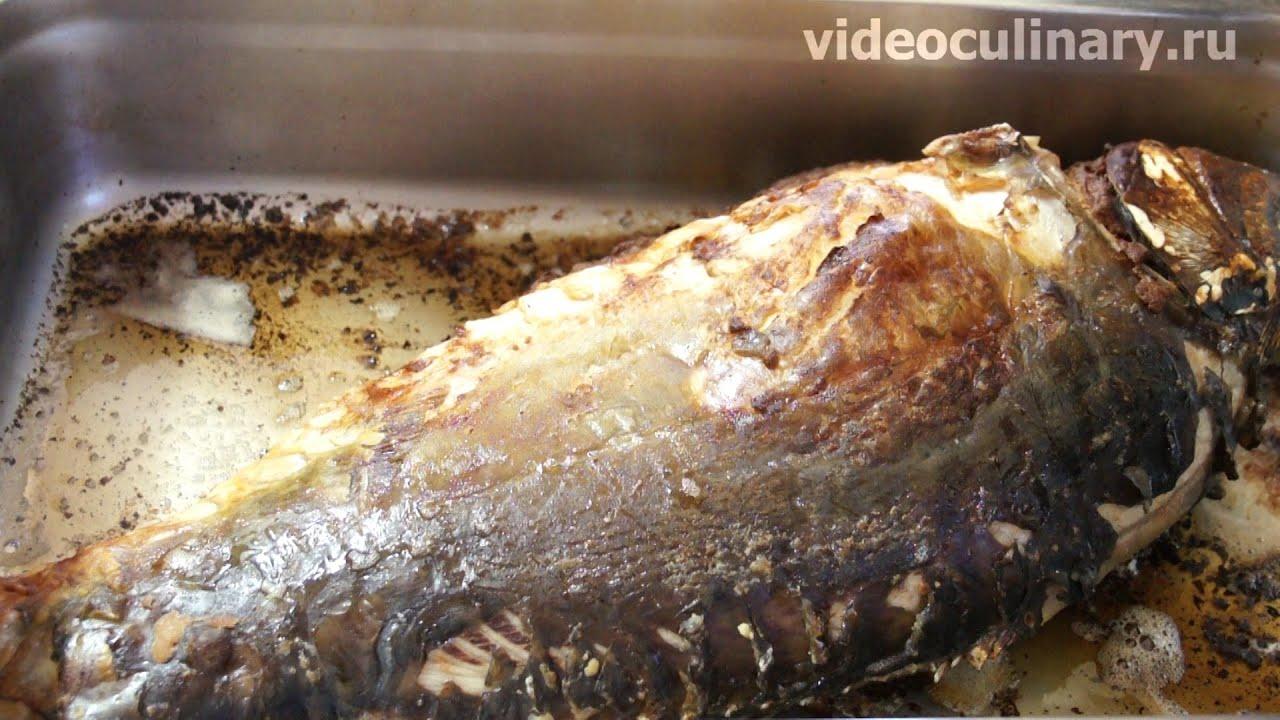 Ловля карпа на горох (Fishing for carp) - YouTube
