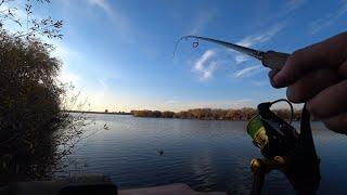 Смена приманок дала результат Рыбалка на щуку Осенью
