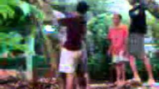Download Video Video amatir nak cômplex   .3gp MP3 3GP MP4