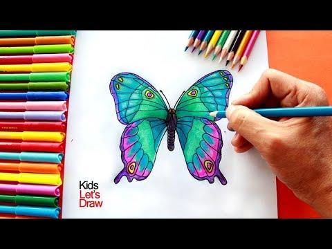 Cómo dibujar y pintar una Mariposa | How to draw a Butterfly - 2/20