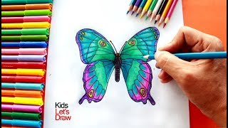 Cómo dibujar y pintar una Mariposa | How to draw a Butterfly - 2/20