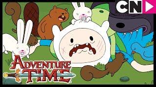 Время приключений | Расскажи мне сказочку | Cartoon Network