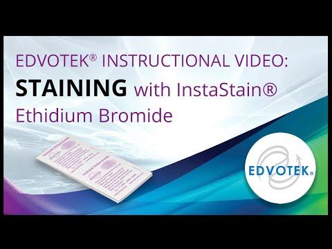 InstaStain® Ethidium Bromide - Edvotek Video Tutorial