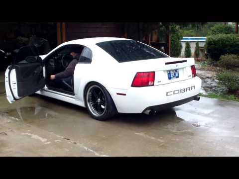 2004 Cobra Cammed!