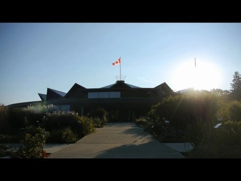 Our Labour of Love | Stratford Festival