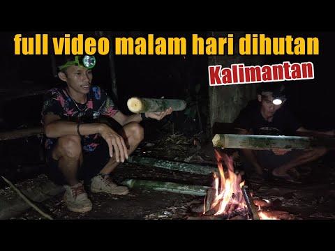 Video Full Malamhari Di Hutan Belantara Kalimantan