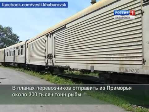 видео: Вести-Хабаровск. Термос на колёсах