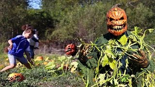 Pumpkin Patch Killer Halloween Hidden Camera Practical Joke