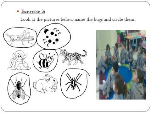 English unit 2 worksheet review kg2 orange - YouTube
