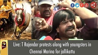 Live: T Rajendar with thousands youngsters Protests for Jallikattu Support at Chennai Marina