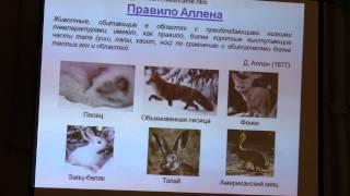 видео: Светлана Боринская. Генетическая история человека и современность.