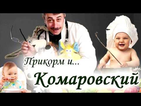 Доктор Комаровский и введение первого прикорма при грудном вскармливании – правила и таблица