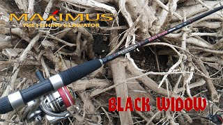 Maximus Black Widow 24ML