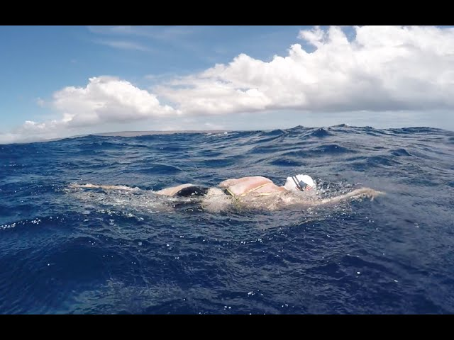 Ranie Pearce, shark scare in Kaiwi Channel