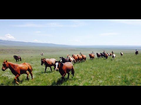 Ride Fast at Silver Spur Ranch Idaho