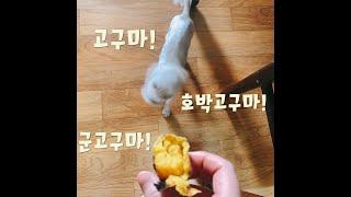 [밍슈크]오븐으로 고구마 굽기!호구마sweet pota…