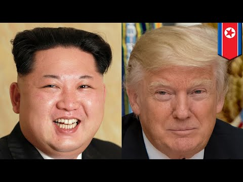 Trump Kim meeting: How will Kim Jong Un travel to see Trump? - TomoNews