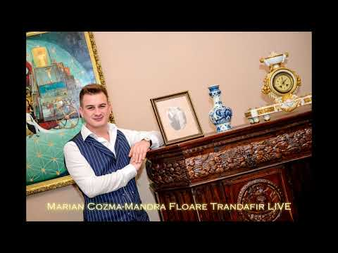 Marian Cozma &