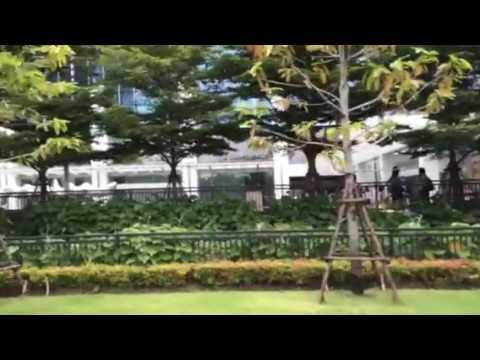 Bangkok MRT : Thailand Cultural Center station