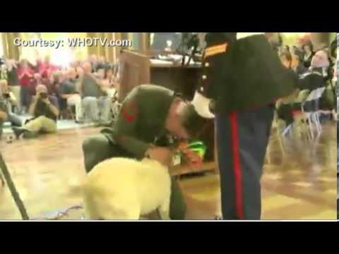 The heart warming moment a marine gets a surprise