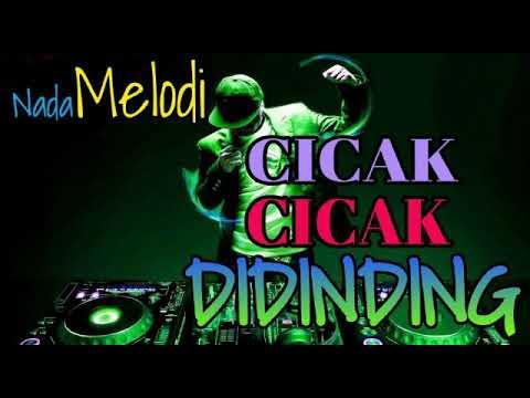 DJ CICAK 2 DI DINDING DJ REMIX KEREN