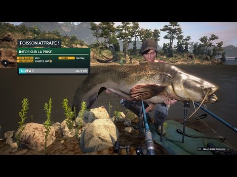 Dovetail Games Euro Fishing Gameplay #1 MULTI BIG CARP AND CATFISH Silure HD PC