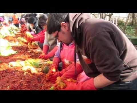 Making Kimchi: A Community Affair - Ansan, South Korea - Ansan Answers