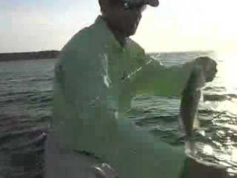 Crappie fishing on lake sam rayburn youtube for Fishing sam rayburn