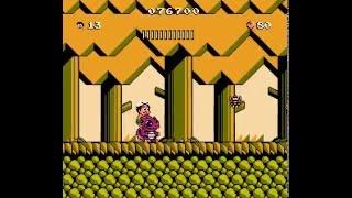 NES Longplay [602] Hudson's Adventure Island III