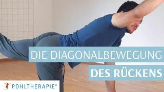 Als Vierfüssler gehen lernen: Die Diagonalbewegung des Rückens