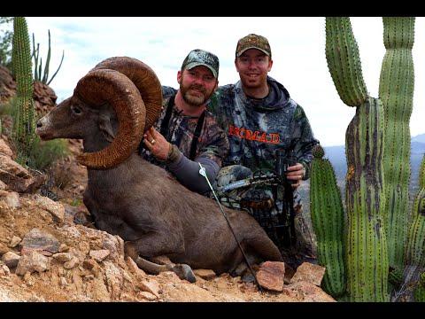 BOWHUNTING GIANT DESERT SHEEP! | L2H S09E07