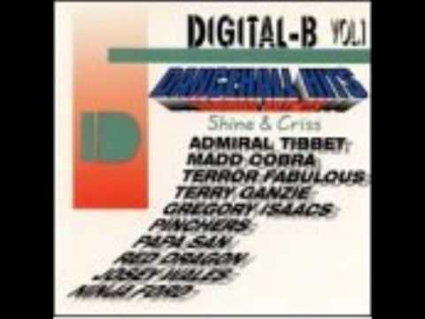 Ba Ba Boom Riddim Shine And Criss riddim mix 1993 (bobby digital