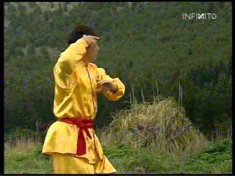 Tai chi la fuerza de la suavidad maestro zang zhi guo 5 - Tari chi la paga ...