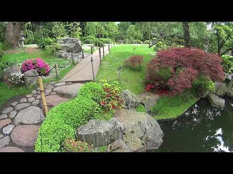 London UK : Holland Park,Kyoto and Dutch Gardens.