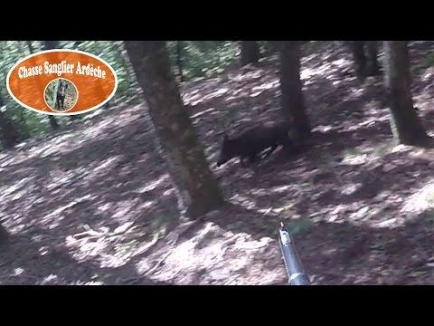 Chasse Du Sanglier En Ardèche 2015-2016 - 02 - Tir D'un Sanglier