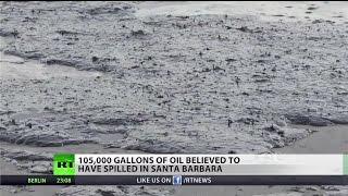 State of emergency in California as oil spill snares wildlife