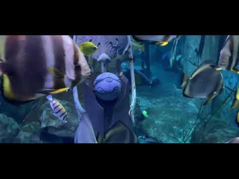 Dubai The Lost Chamber Aquarium 2021