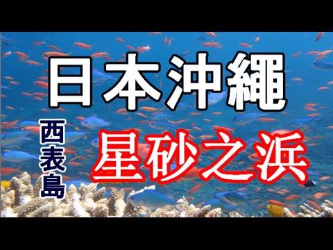 日本之旅:沖繩縣 西表島(Iriomoteima) 星砂之浜(Hoshizuna no Hama)☆ 於美麗海灘尋找可愛的小星砂☆☆ 海洋植物內的微生物細胞的骨骼 沖繩04 Moopon