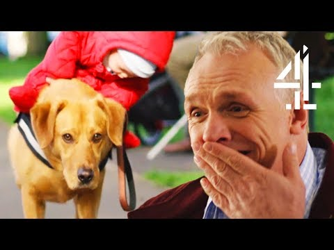 Trying To Get A Dog To Do As He's Told | Man Down (Bloopers)