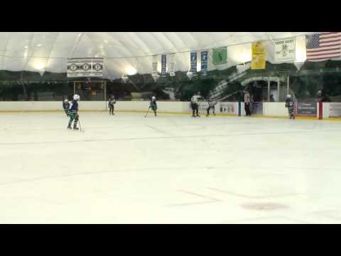 Goalie Hitting Player at Youth Hockey Game