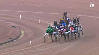 Vidéo de la course PMU PRIX PIERRE-DESIRE ALLAIRE
