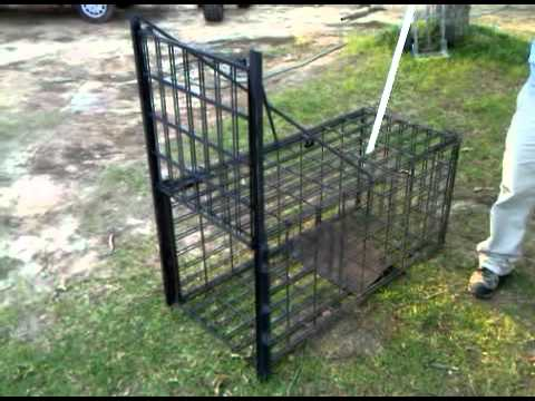 Animal Trap with Guillotine Style Door - YouTube
